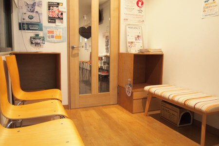 上島動病院猫専用待合室